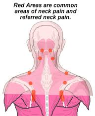 Vertebrae image - San Diego Chiropractic, Massage specialize in pain relief and treatment of brain, neck, spine and nerves utilizing various techniques to achieve optimal results.